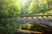 Bridge — Stockfoto
