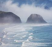 Okyanus kıyısı — Stok fotoğraf