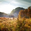 Autumn in Yosemite — Stock Photo #12587957