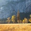 Stock Photo: Autumn in Yosemite