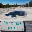 Yellowstone Park — Stock Photo