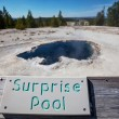 Stock Photo: Yellowstone Park