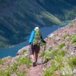 Hike in Glacier — Stock Photo
