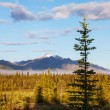 Stock Photo: Alasklandscapes