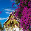 Temple in Luang Prabang — Stock Photo #15767579