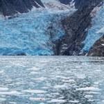 Glacier on Alaska — Stock Photo