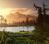 Picture lake — Stock Photo