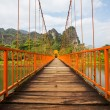 Bridge in Vang Vieng — ストック写真
