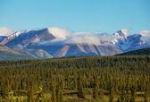 Alaskan landscapes — Stock Photo