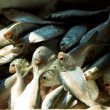 Stock Photo: Fish market