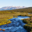 River on Alaska - Foto Stock