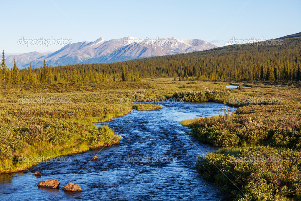 Blue river,Alaska — Stock Photo #17687697