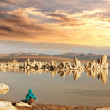 Mono lake - Stock Photo
