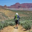 Hike in Grand Canyon — Stock Photo #18107319