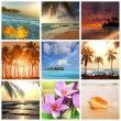 Tropical beach — Stock Photo #18831625