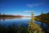 Jezero na aljašce — Stock fotografie