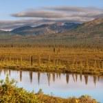Lake on Alaska — Stock Photo #19231757