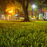 Lawn — Stock Photo #19404803
