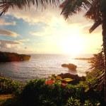 Hawaii — Stock Photo #19511813