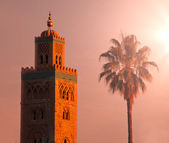 Marrakesh — Stock Photo