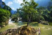 River in Vietnam — Stock Photo