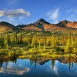 Lake on Alaska — Stock Photo #20971993