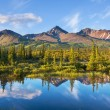 Lake on Alaska — Stock Photo #21130655