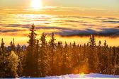 Montagnes de norvège — Photo