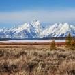 Stock Photo: Grand Teton