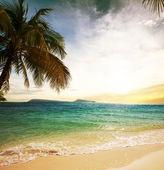 Playa tropical — Foto de Stock
