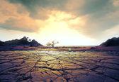 Kuraklık arazi — Stok fotoğraf