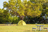 Tent on grassland — Stock Photo