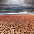 Drought land — Stock Photo #25050757