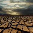 Drought land — Stock Photo #25424969