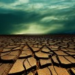 Drought land — Stock Photo #25425059