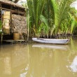 Stock Photo: Mekong Delta