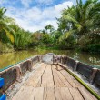 Mekong Delta — Stock Photo #26617129