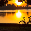 Bicycle — Stockfoto #26710497