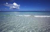 Maldiverna — Stockfoto