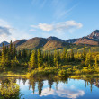 Lake on Alaska — Stock Photo #26863959