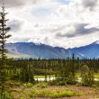 Foto Stock: Lake on Alaska