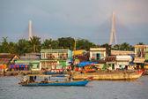 Mekong Delta — Stock Photo