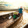 Mekong Delta — Stock Photo #27511553