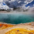 Yellowstone — Stock Photo #27655847