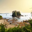 Olympic coast — Stock Photo #28194427