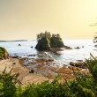 Olympic coast — Stock Photo