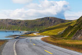Road in North Norway — 图库照片