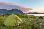 Tent in Lofoten — Stock Photo