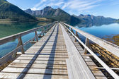 Boardwalk in Norway — Stock Photo