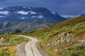 Road in Norway — Stock Photo